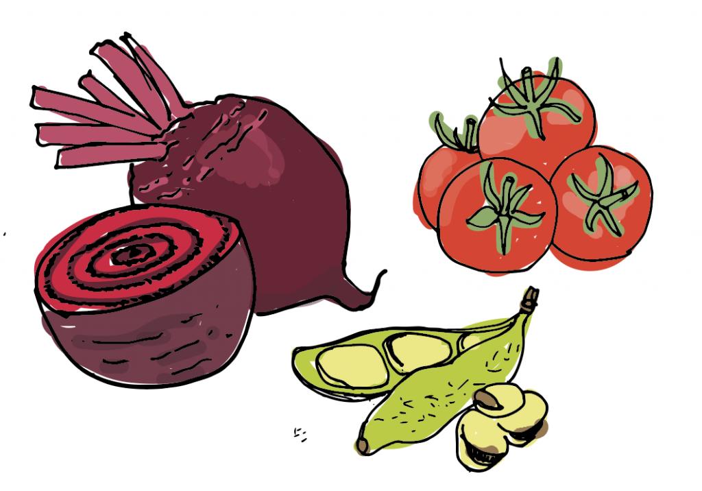 illustration calendrier fruits et légumes de saison
